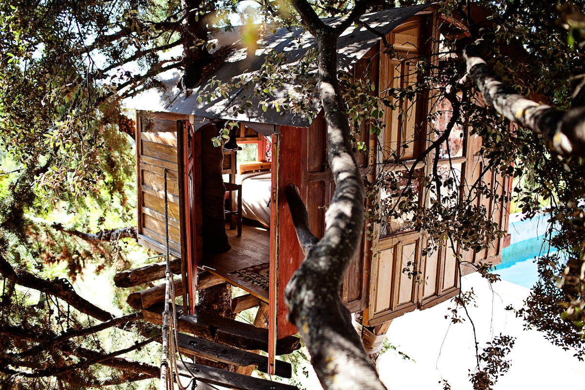 treehouse in a Natural Park