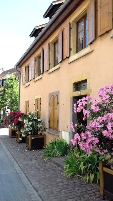 Chez Régine et Alfred - Rouffach - Apartamento