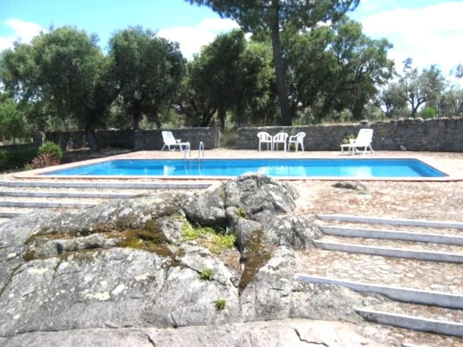 Nature cottage with delicious pool - Alagoa - Villa