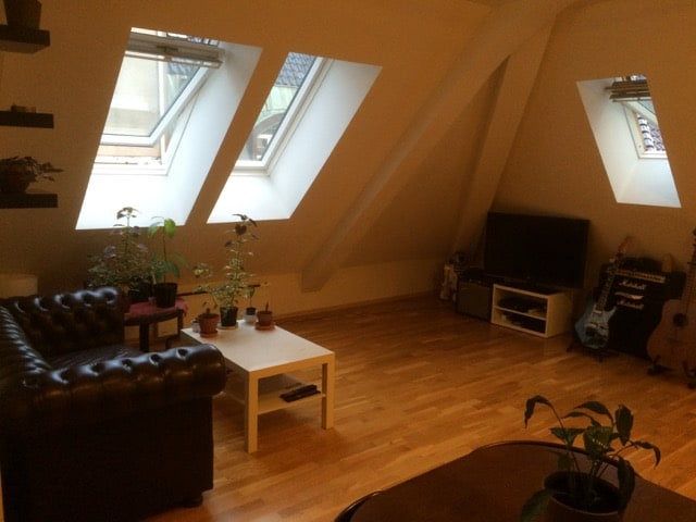 Cozy flat in city centre
