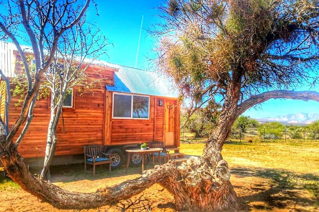 Tiny House near Death Valley /The hummingbird - Sandy Valley - Blockhütte