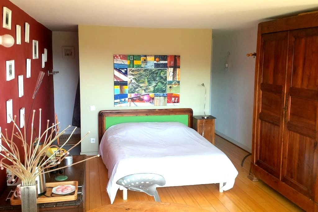 FLAT Le Corbusier FIRMINY - Firminy - Departamento