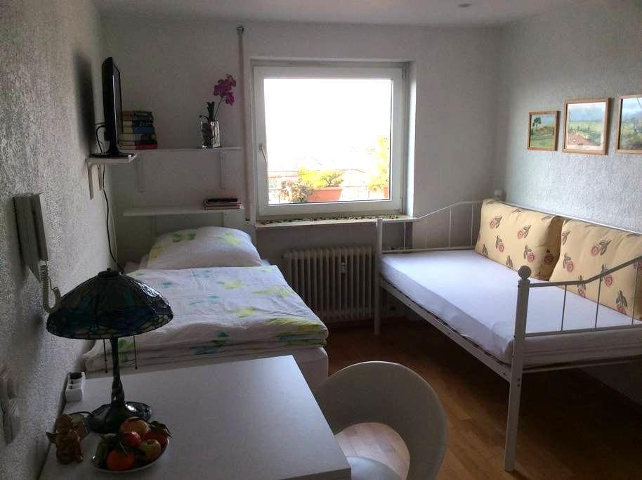 Welcome Penthouse Apartment Konstanz Bodensee - Konstanz - Apartamento