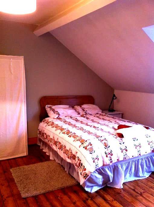 Double room with option of Yoga! - Belfast - Bed & Breakfast