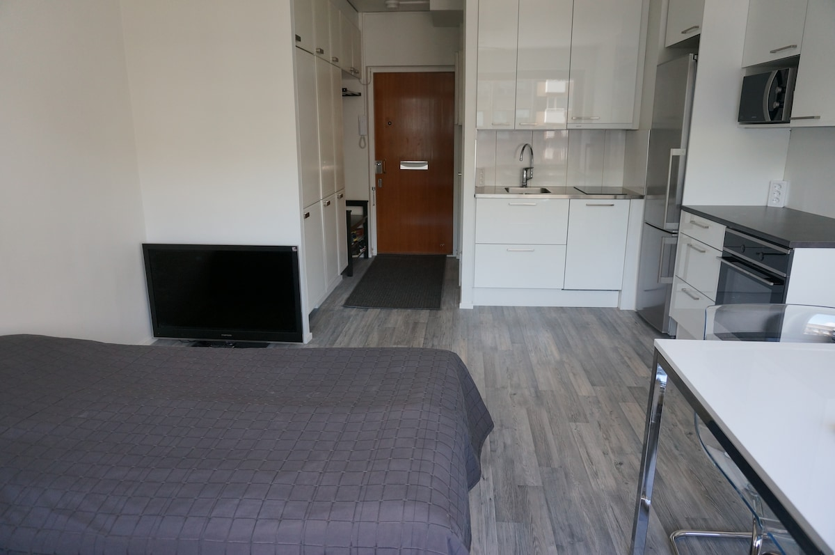 Cozy one room flat in city center