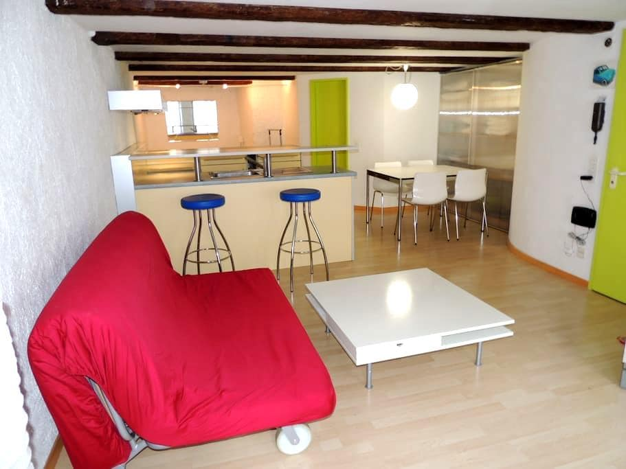 Flat in the historic city centre of Solothurn - Solothurn