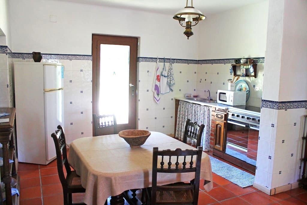 Charming house in a beautiful farm - Constância - Maison