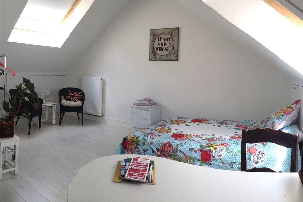Spacious room in charming house - Leuven - Rumah