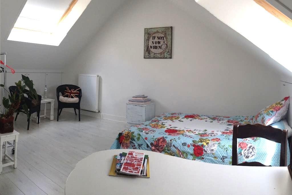 Spacious room in charming house - Leuven - Ev