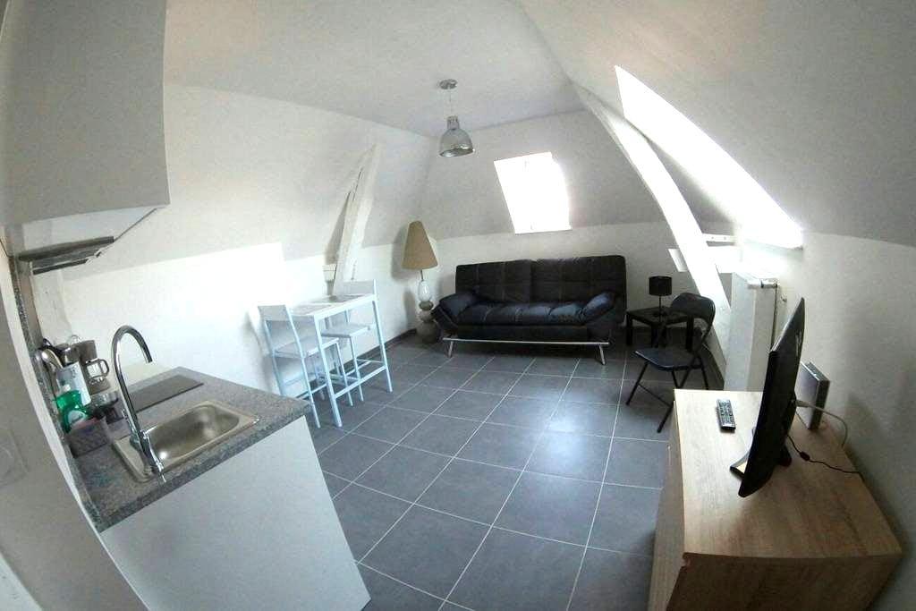 Studio confort et charme Autun plein-centre - Autun - 公寓
