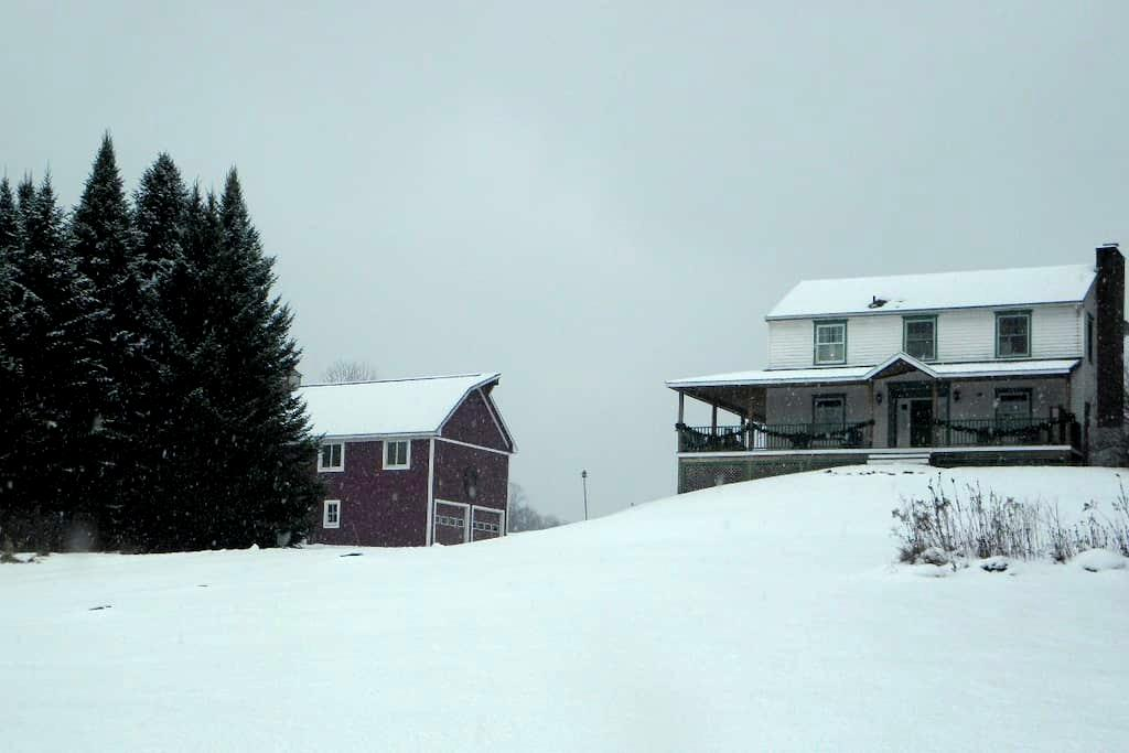 Barn suite in lovely private setting - Hinesburg - Apartment