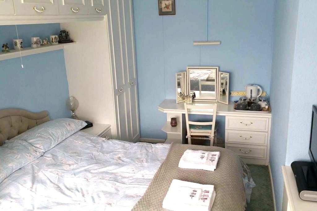 Bright and spacious double room - York - House