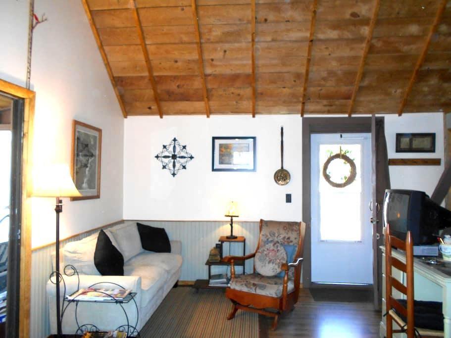 Cozy Chalet Cabin: Finger Lakes - Hammondsport
