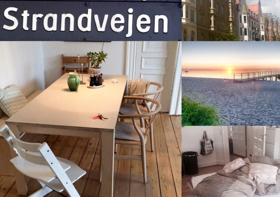Wonderfull apartment shops + beach
