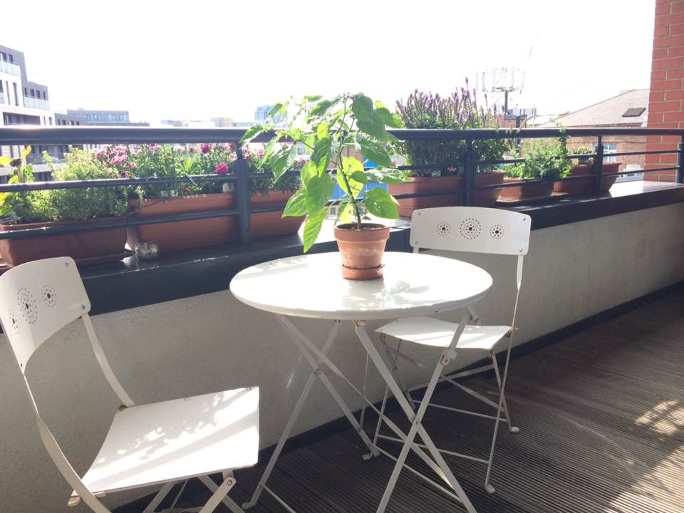 Central 1 double bed flat with view