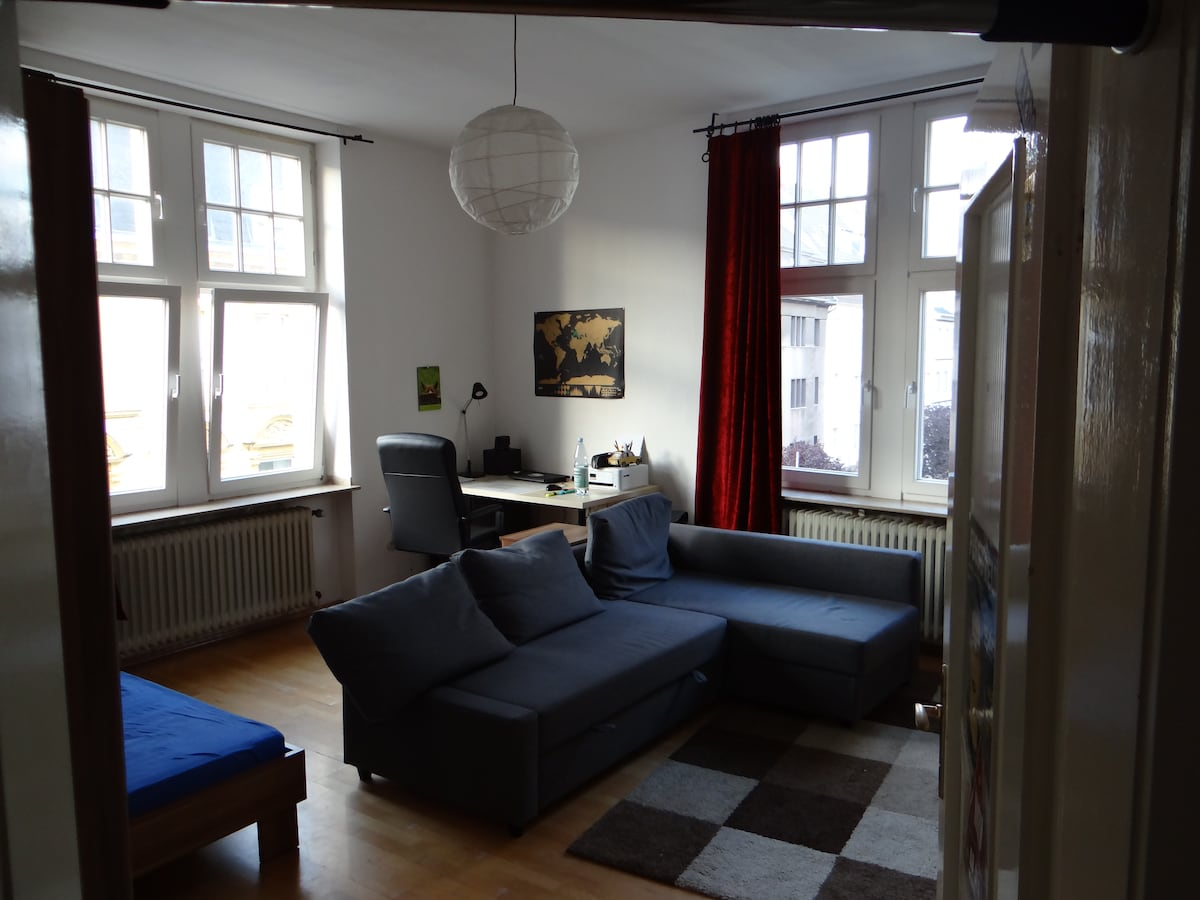 Lovely, big room in the city center