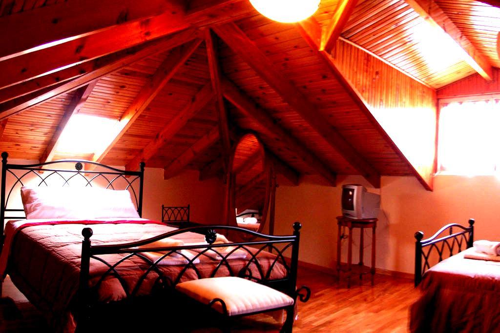 Cosy Attic apartment 60m2 Nafplio!! - Navplion - Loft