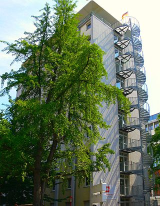 Great Appartment Centrally Located