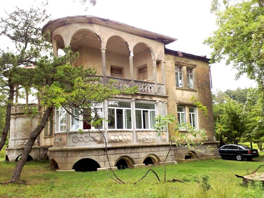 Dom/apartment, Batumi, Tsikhisdziri - Batumi
