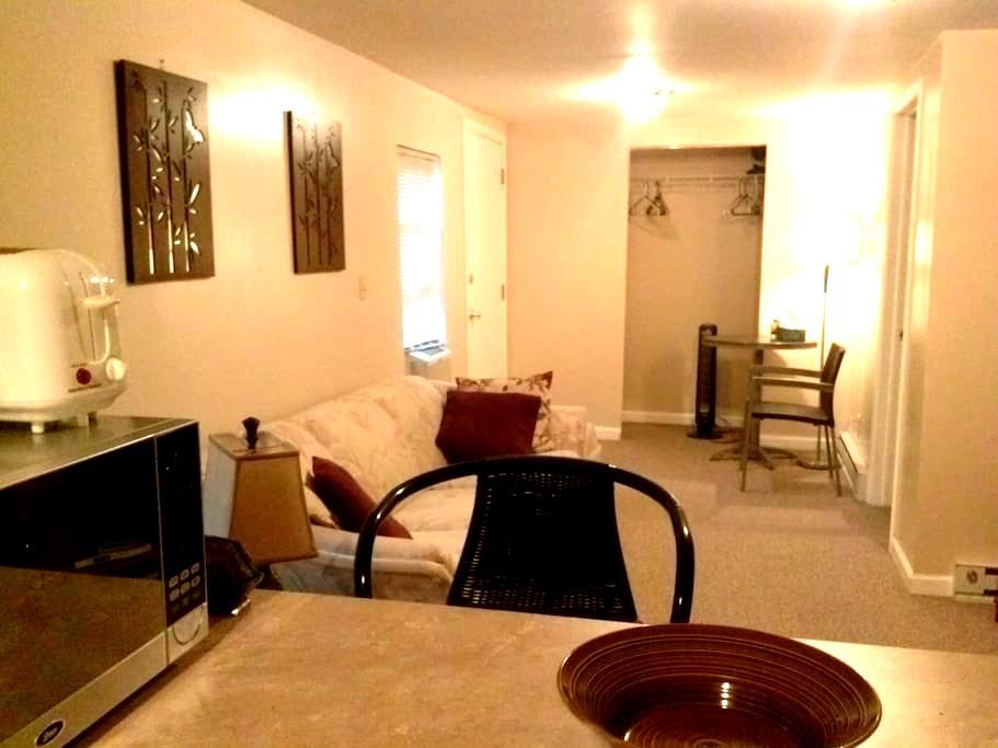 A Quiet Retreat away from Home - Cincinnati - Appartement