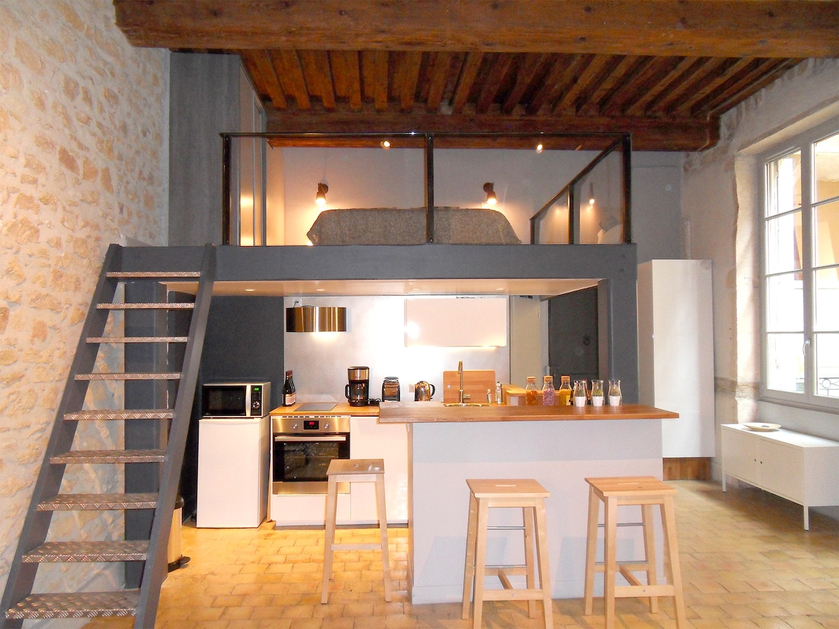 Charming apt in the Heart of Lyon