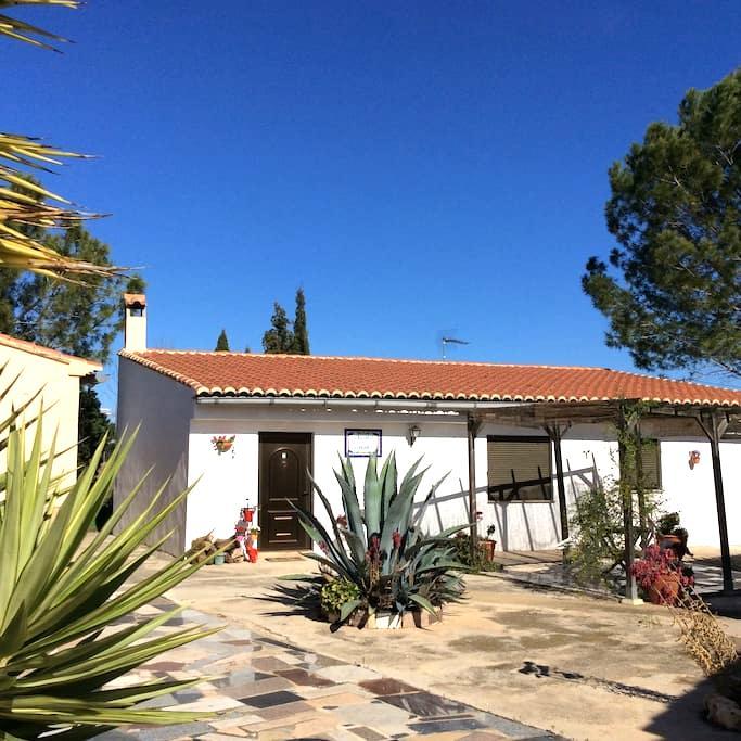Casita near Xativa, Valencia - L'Alcudia de Crespins - Haus