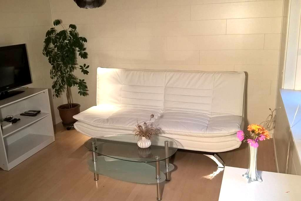 New guesthouse apartment 20 minutes from center - Rødovre - Rumah Tamu