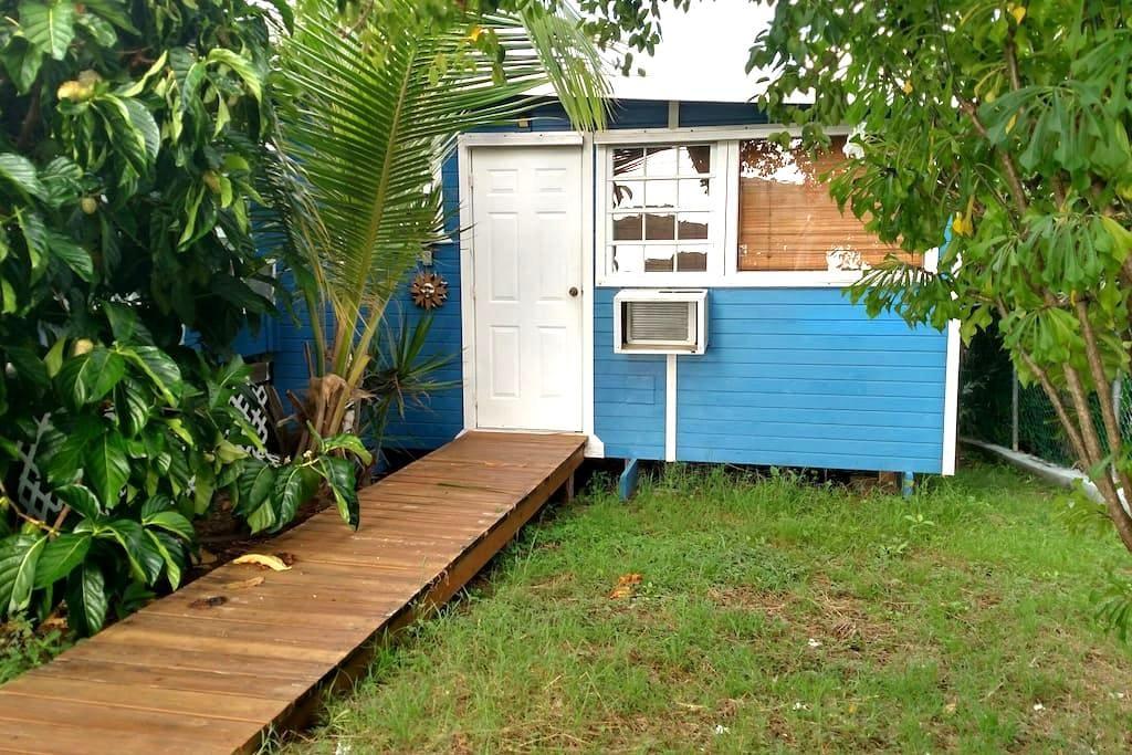Culebra Casita Azul - Studio - Culebra