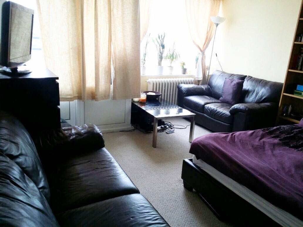 Comfortable Room Pimlico/Victoria