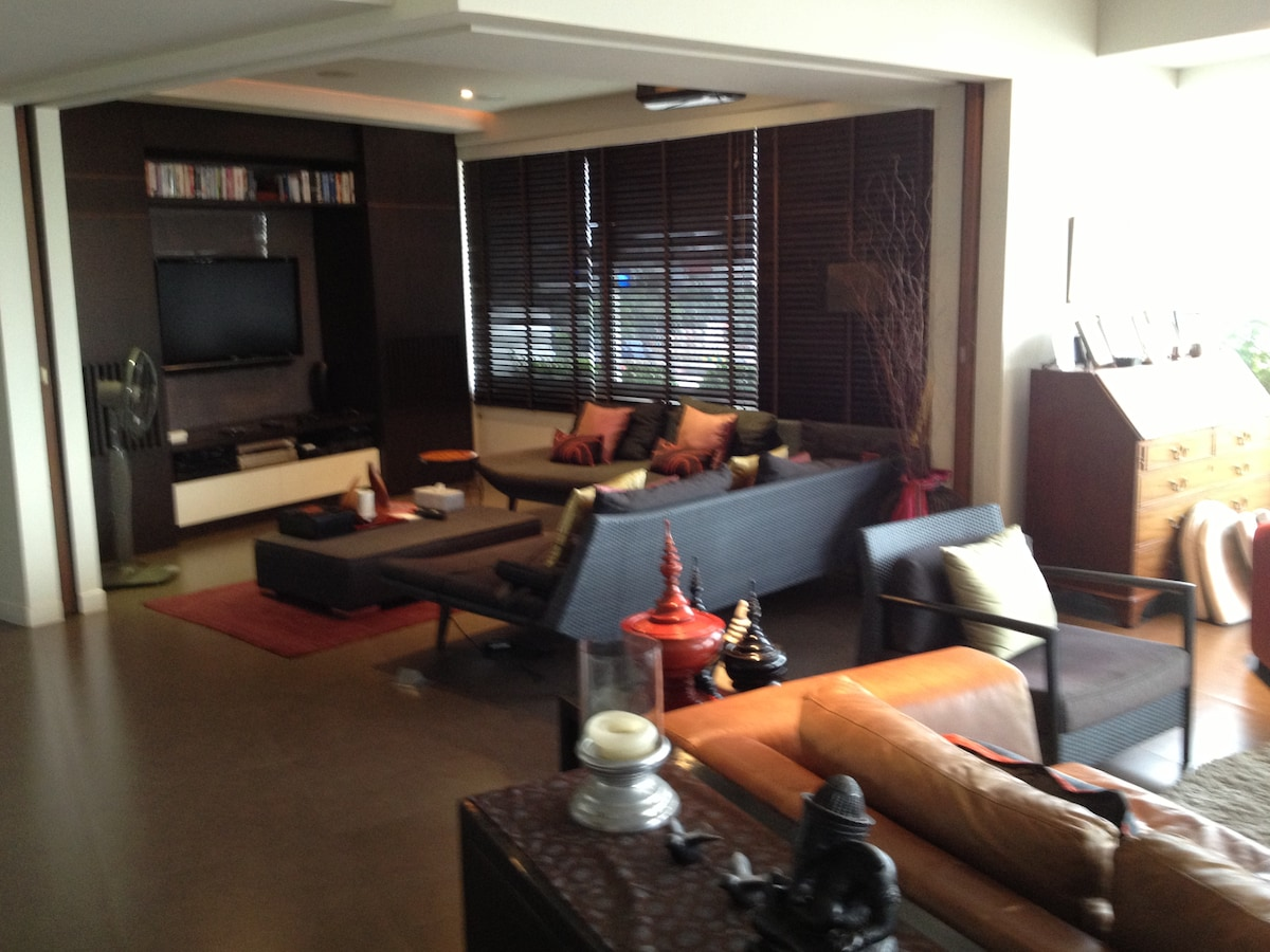 TV area. Home cinema with large automatic screen and huge selection of DVDs