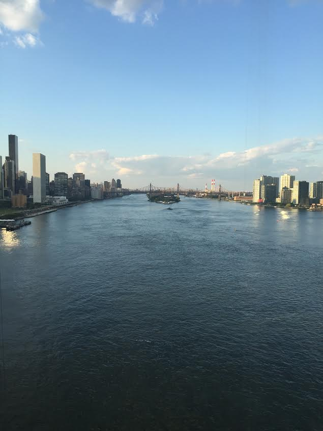 Amazing East River Room with a view