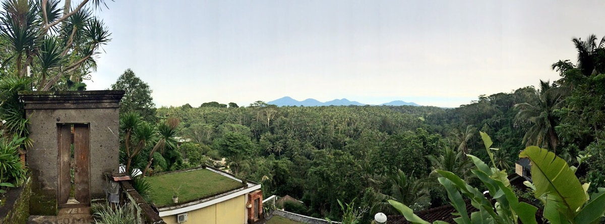 An amazing and rare view of Ubud
