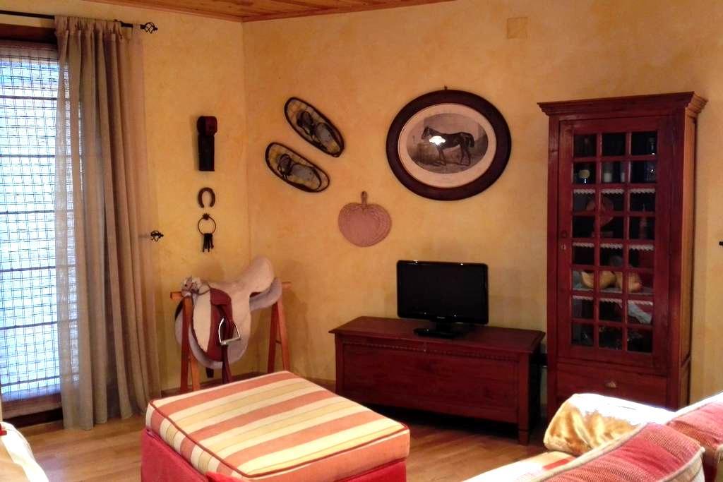 ESCAPADA ROMANTICA VALL DE BOI - Barruera - Apartment