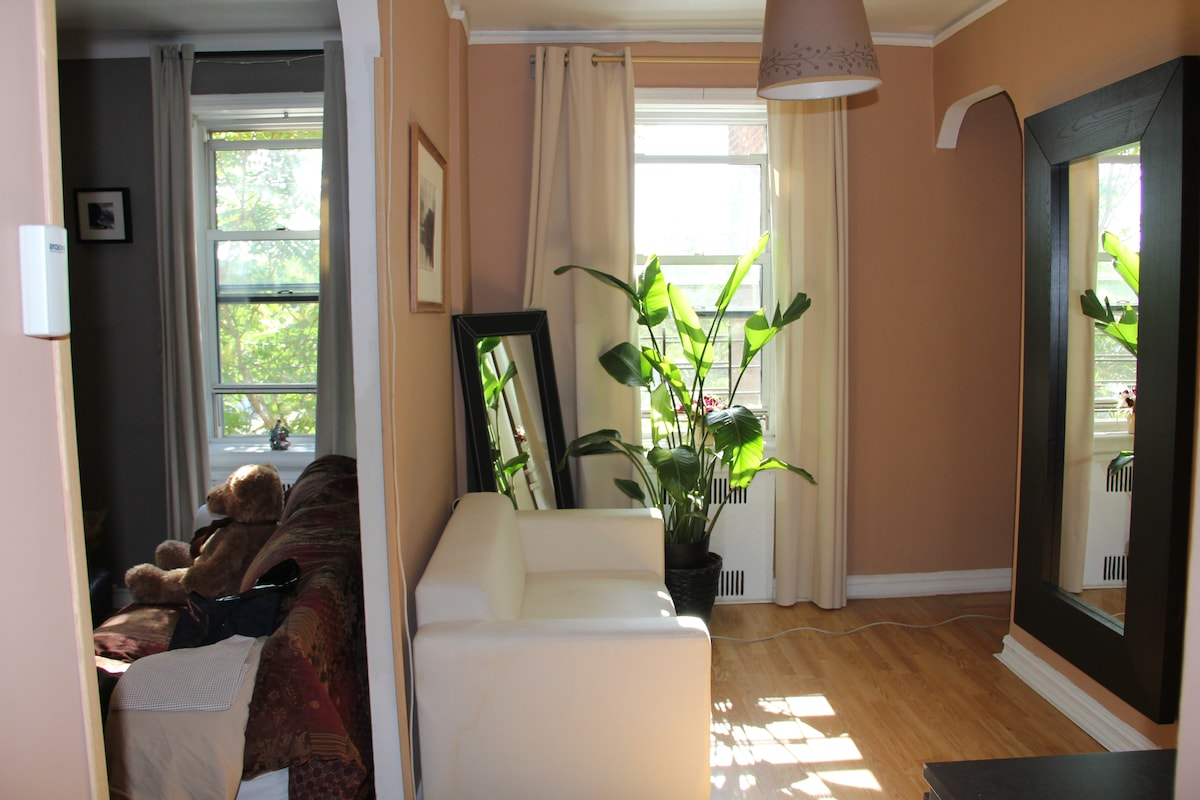 Huge Rm in 1BR Park Slope by train