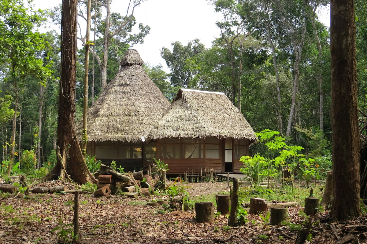 Cottage in the Amazon jungle