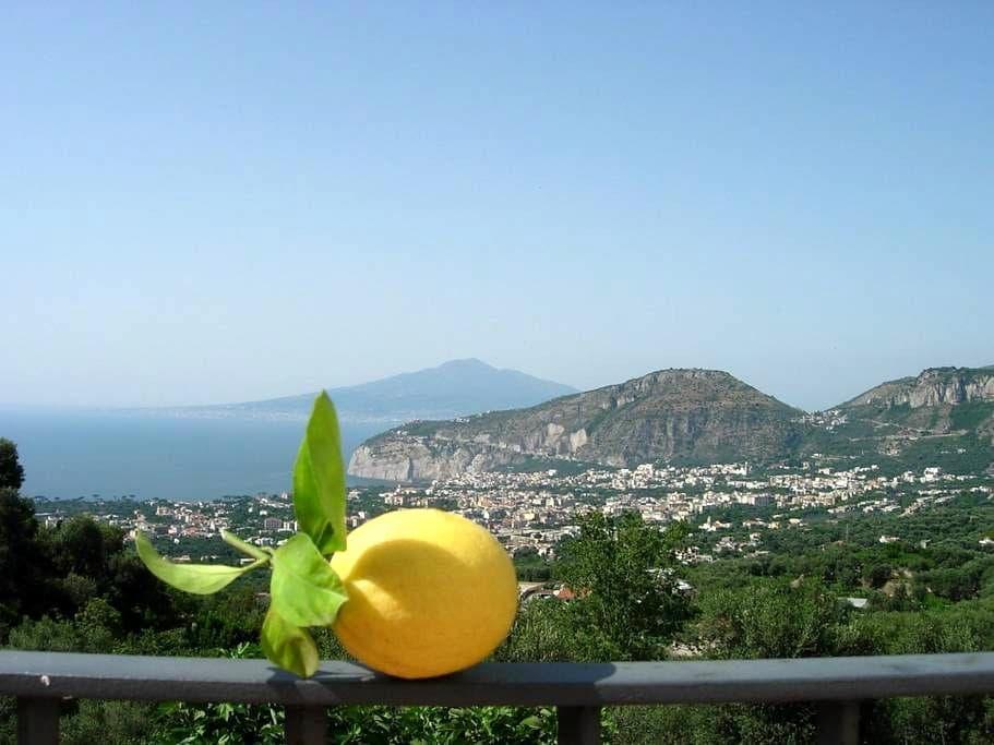 Agribio farm-house on Amalfi cost   - Sant'Agnello - Apartment