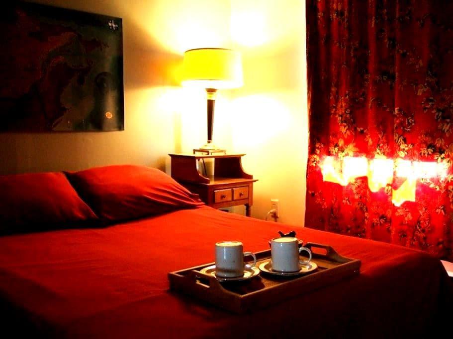 Chaleureux & bien situé-A1 location - Québec - Appartement