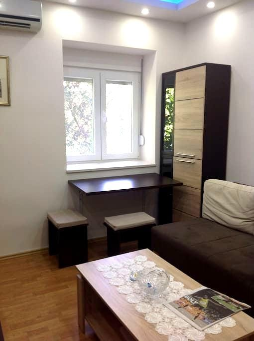 Cozy and cute apartment - Podgorica - Apartment