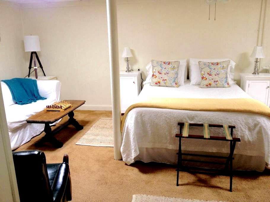 In-town spacious basement apt. w/ private entrance - Newport - House