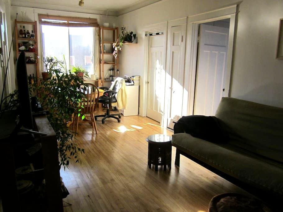 Charming 4 1/2 in the Mile-end - Montreal - Apartamento