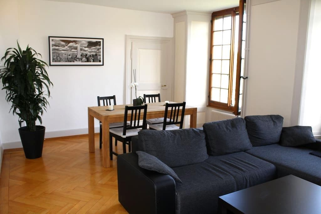 Room in lovely old appartment - Fribourg - Appartement