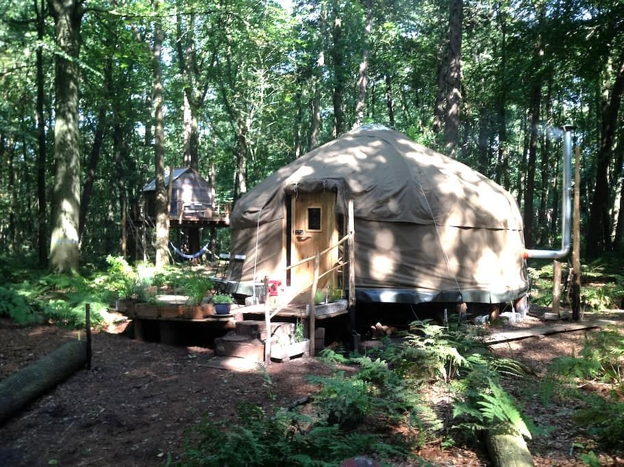 Forest Yurt near Bruges - Oostkamp - Yurt
