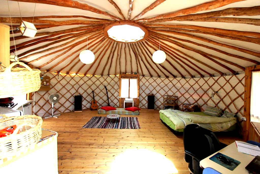 Yurt - a unique home in nature - Nataf