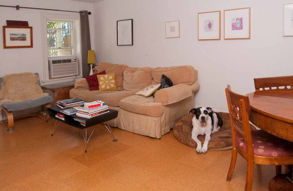 Living room with pet (he won't be staying with you)