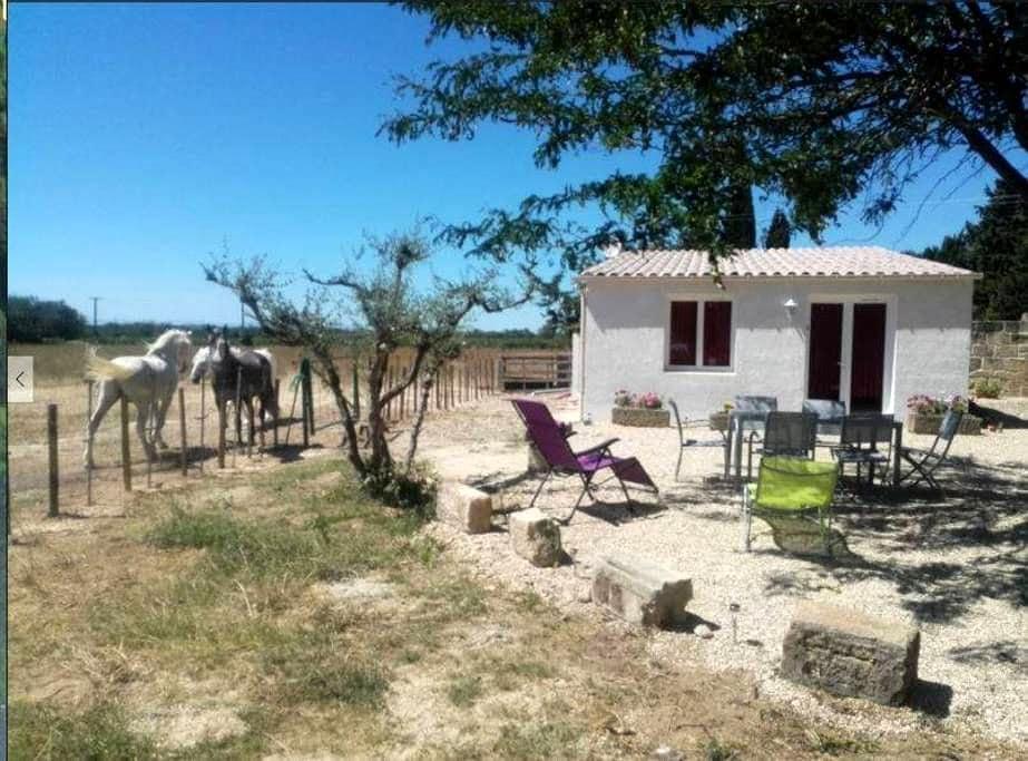 Logement T2 neuf en Camargue - Le Cailar - Huoneisto