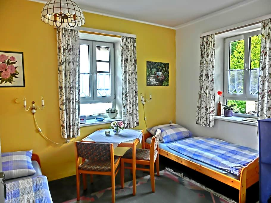 friendly room with space for two - Starnberg - Apartment