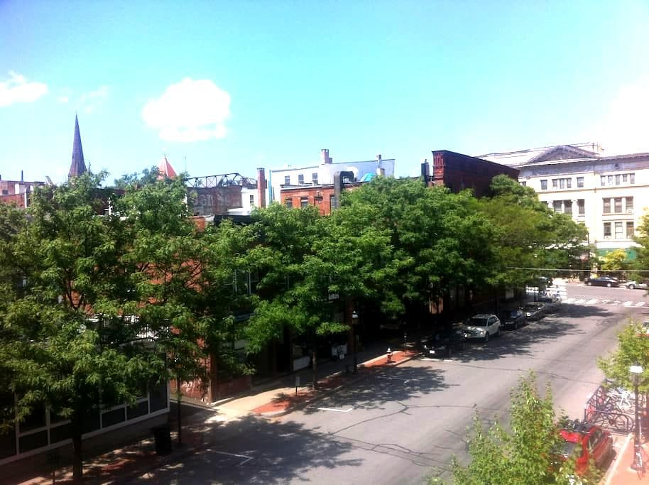 Loft Apt. Steps to Noho Nightlife - Walk to Smith! - Northampton - Appartement