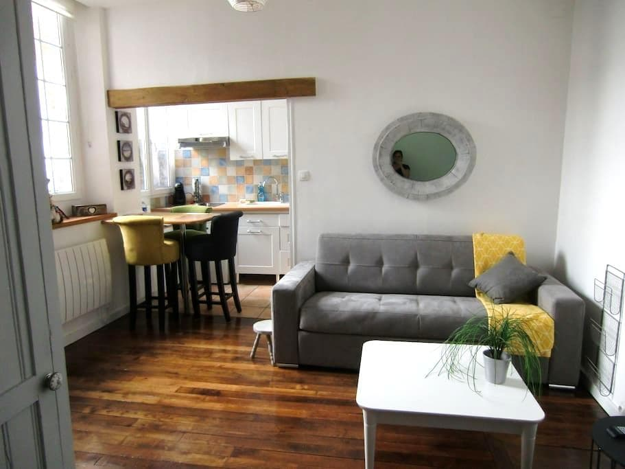 Studio hyper centre - Breakfast drink included - Orléans - Apartamento