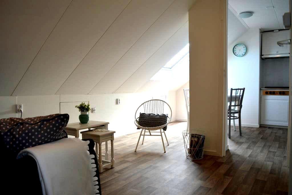 Appartement op loopafstand van strand/bos/centrum - De Koog