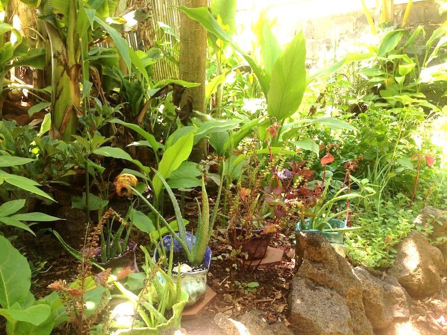Garden Getaway Room   :::   House of Bliss - Hawi